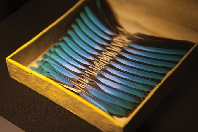 Kingfisher feathers in their original box